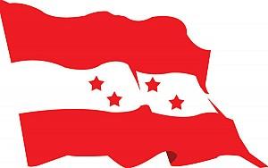 congress flag (2)