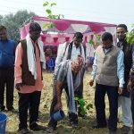 """नेपालगंज में """"स्वस्थ वातावरण-स्वस्थ जीवन"""" मूल नारा के साथ बृक्षरोपण"""